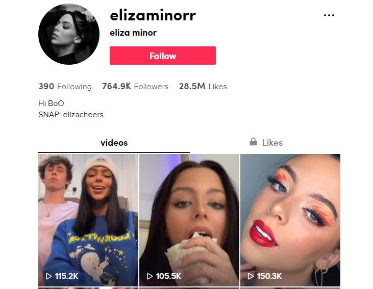 Социальные сети Элизы Минор