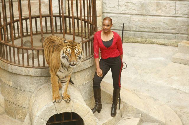 Моник Анжон – укротительница тигров